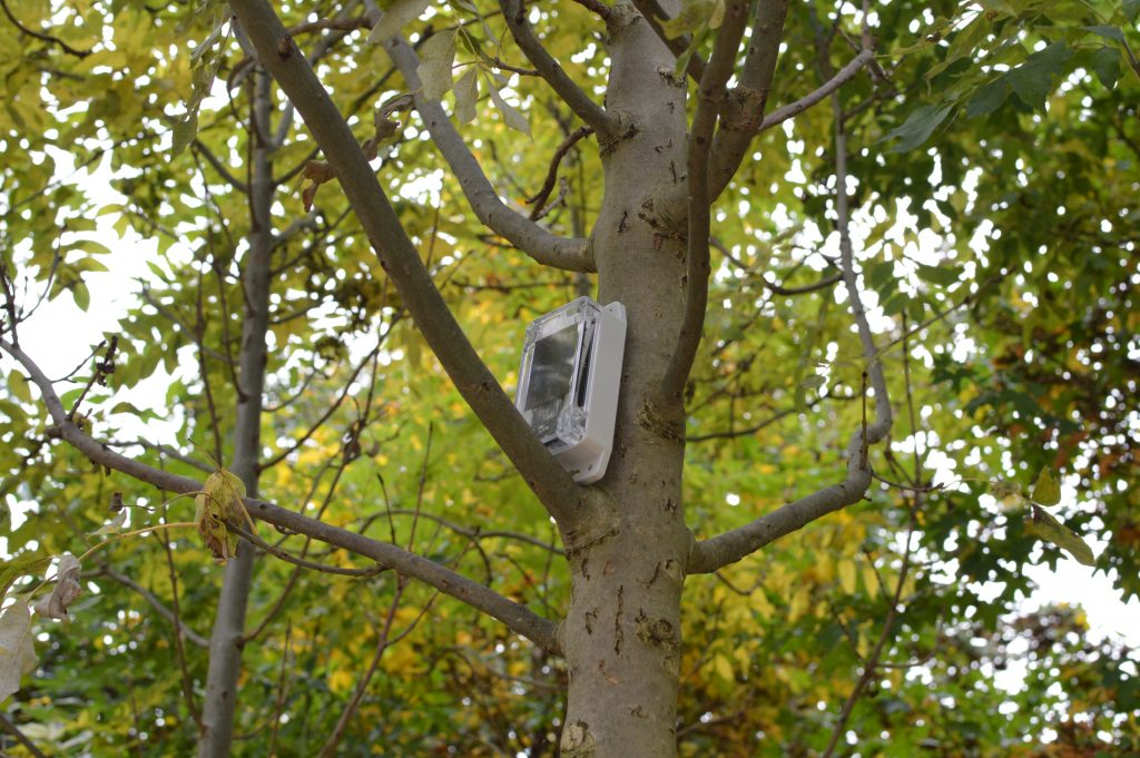 ENO aware Microclimate sensor installed in Queen Elizabeth Olympic Park