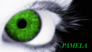 PAMELA logo