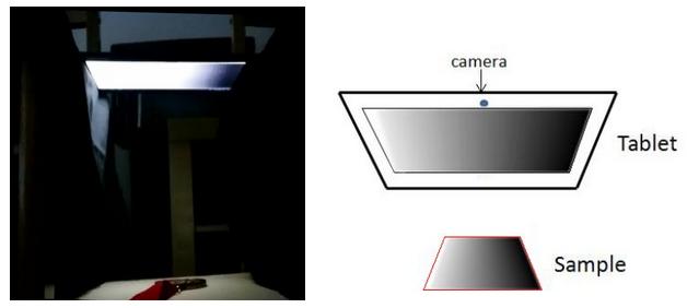 LCD-panel